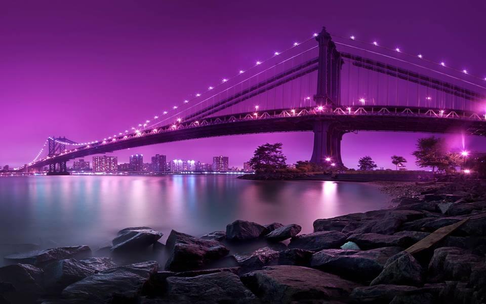 tiltai-nakti4