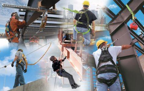 darbo sauga