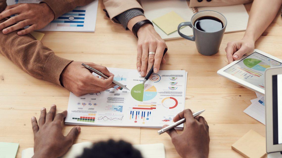 verslo valdymo sistema